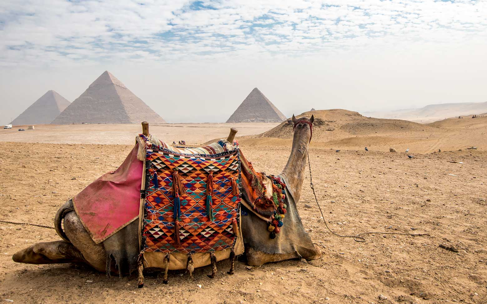What to See in Cairo? The Good, the Bad and the Ugly