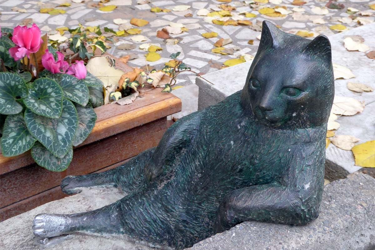 Tombili-statue-in-Istanbul
