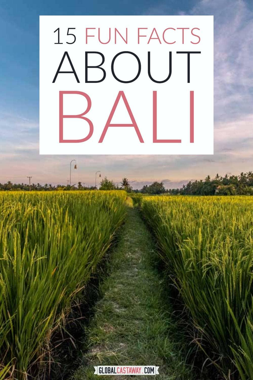 bali-facts-pin