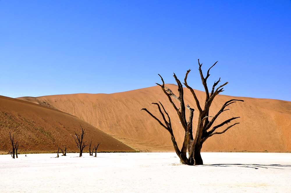 best travel bucket list - namibia desert