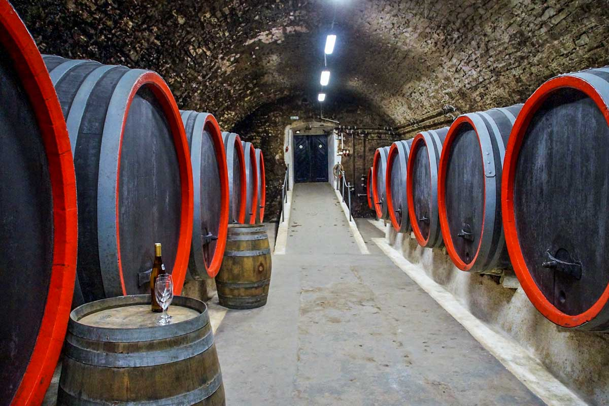 porto itinerary - wine tour