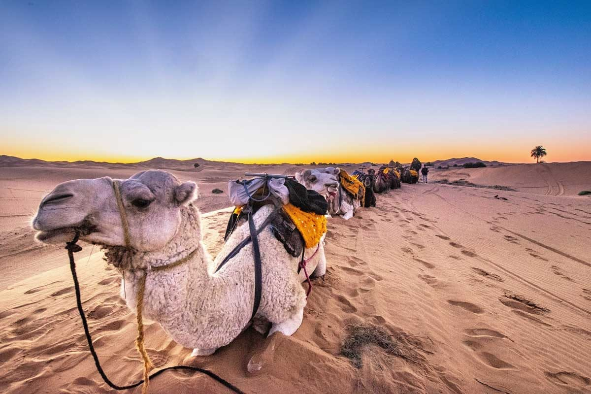 10 Day Morocco Itinerary - Sahara Desert