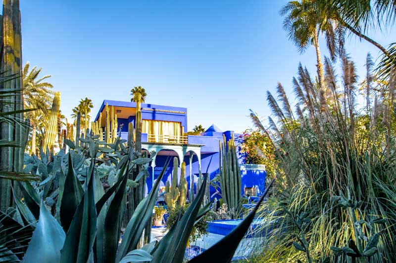 10 Days Morocco Itinerary - Le Jardin Majorelle