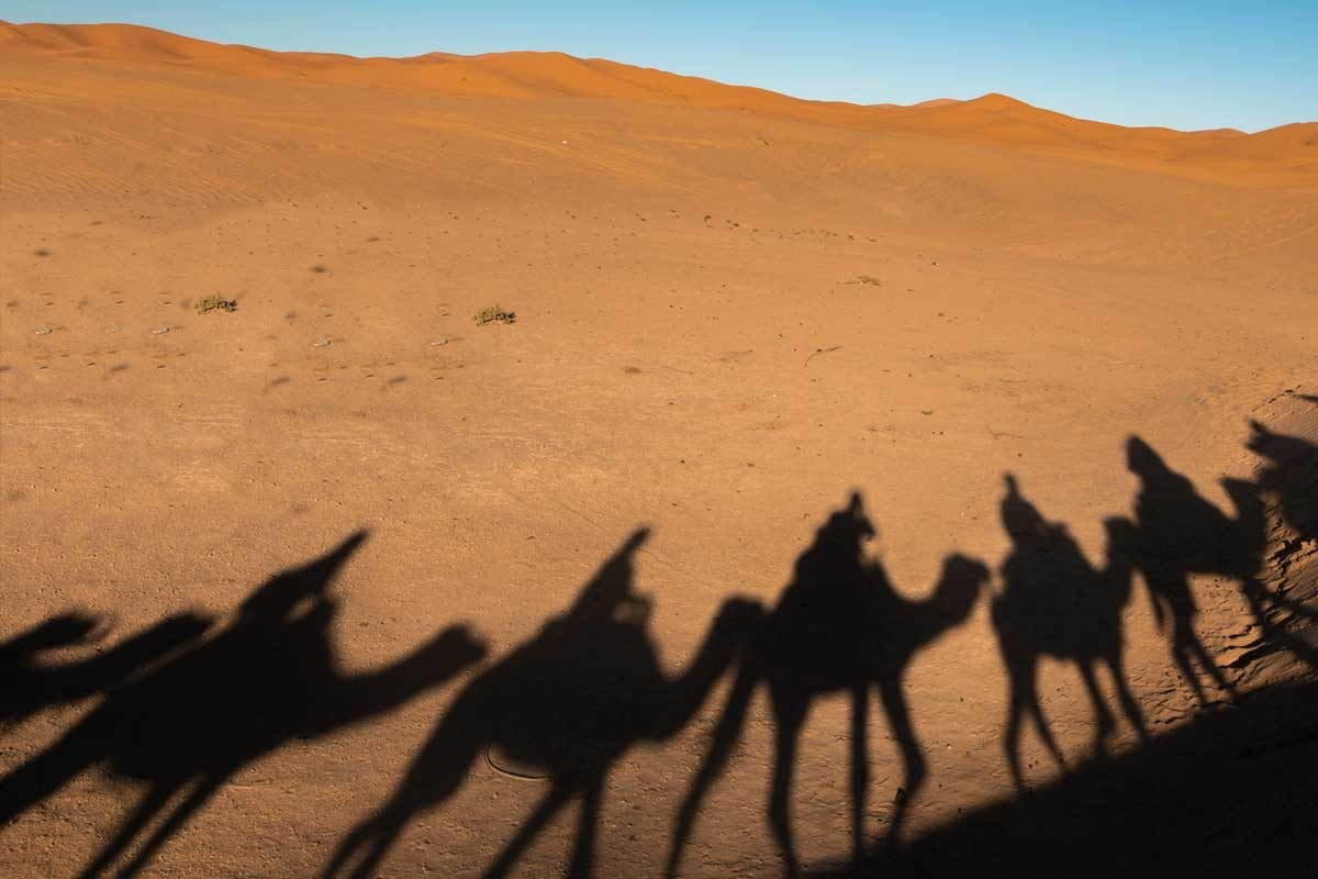Sahara Desert-Camel Riding