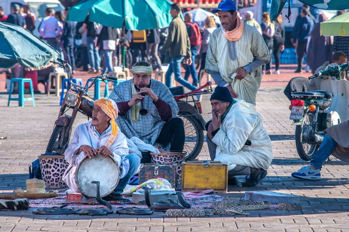 Sanke Charmers in Marrakesh
