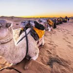 The Ultimate 10 Days Morocco Itinerary