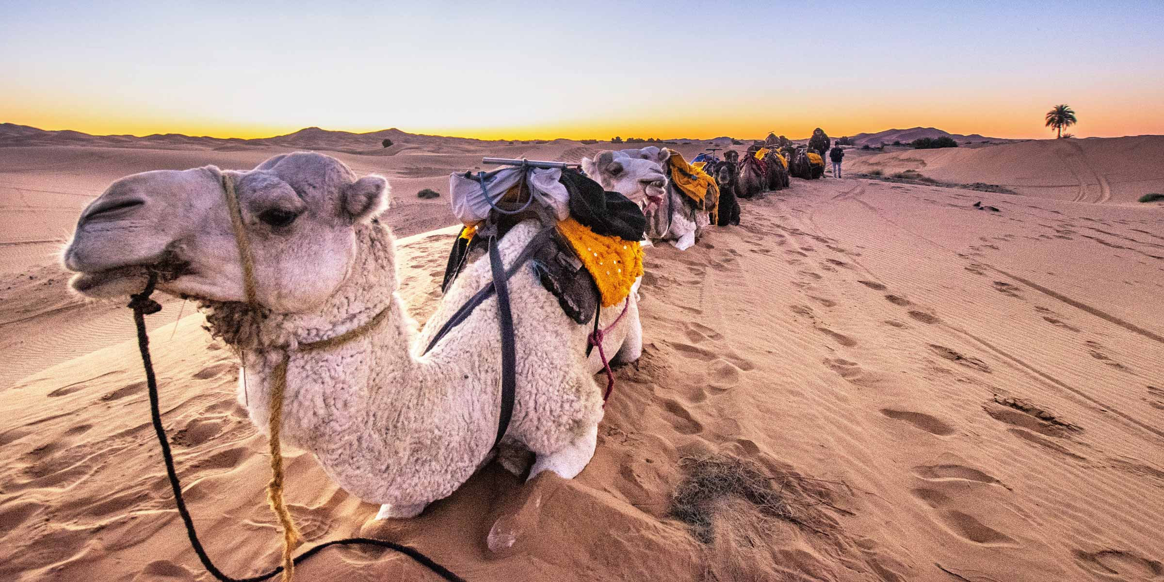 The Ultimate 10 Days Morocco Travel Itinerary cover
