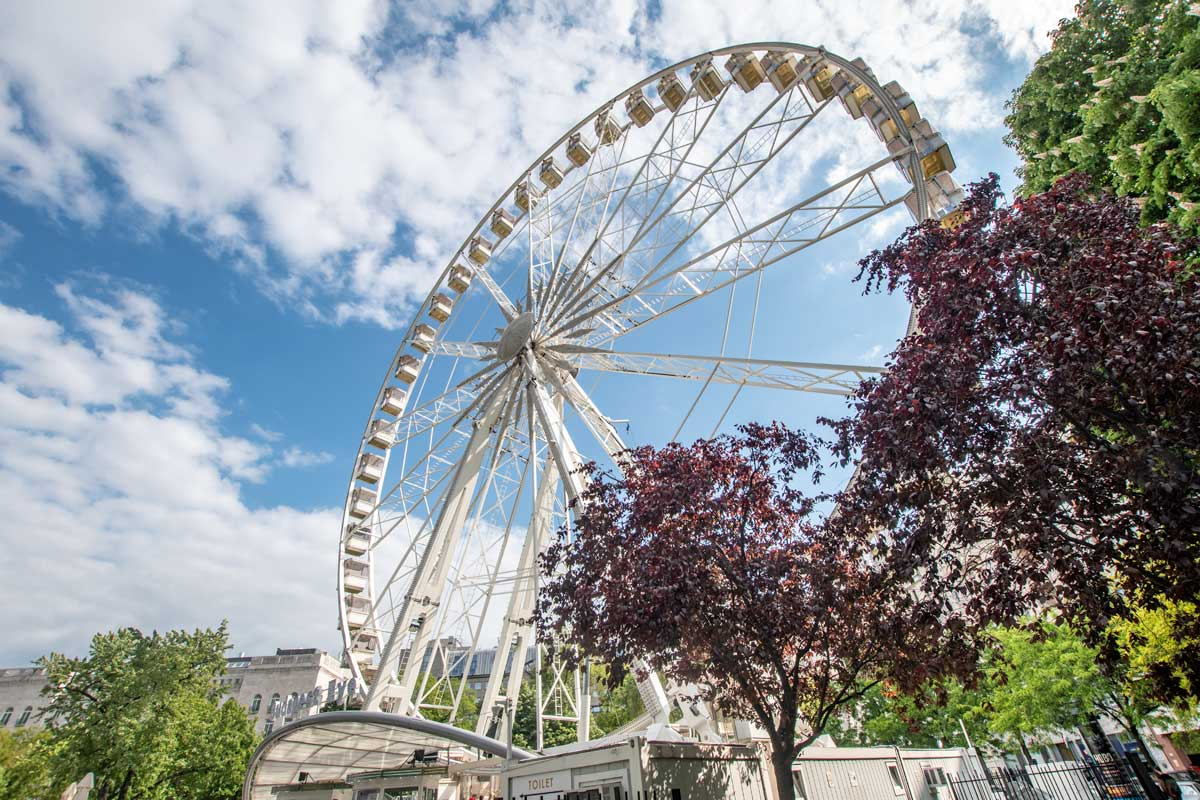 Budapest Eye with spring trees around it