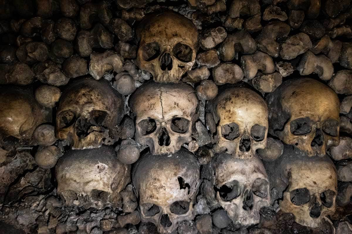 Skulls from the Paris Catacombs