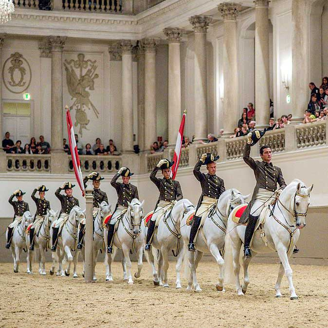 Spanish Riding school show