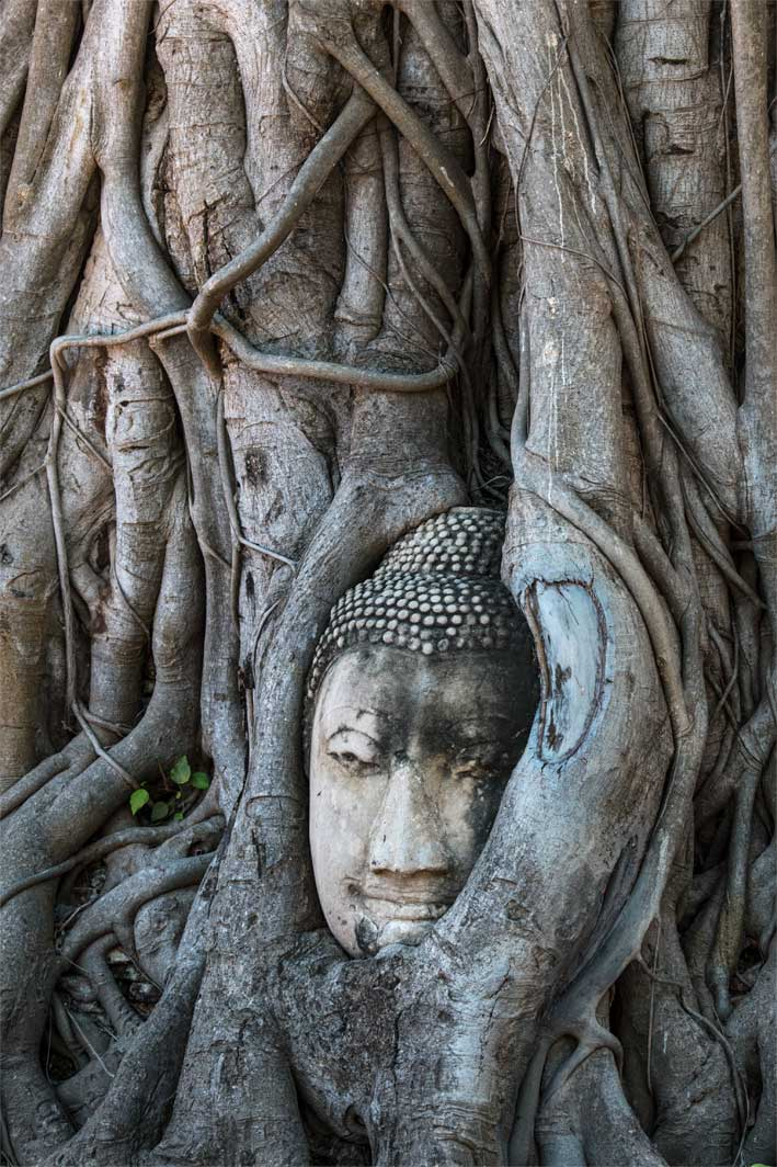 ancient sites - Ayutthaya, Thailand