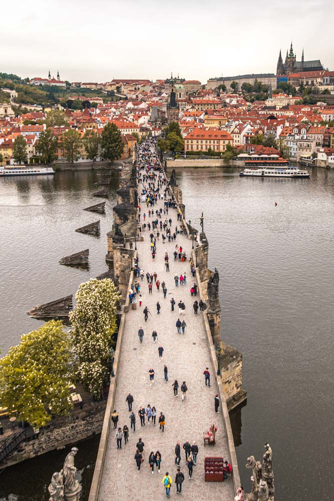 view-from-Charles-Bridge-Tower
