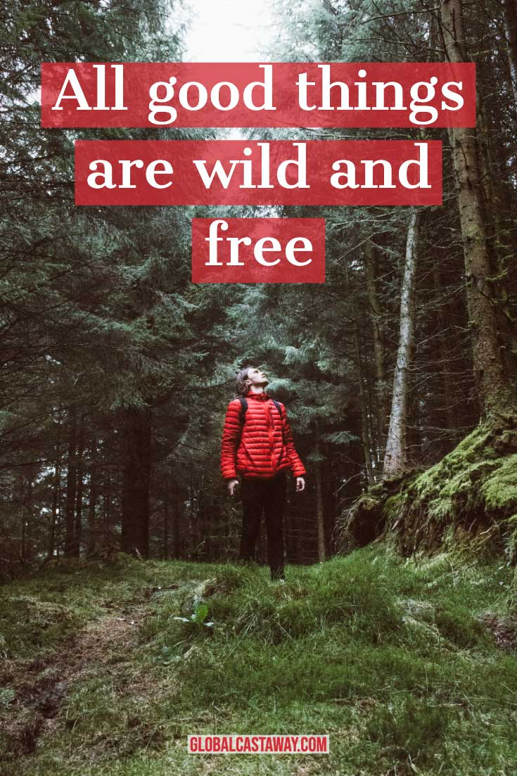 short-adventure-quotes-all-good-things-are-free-and-wild