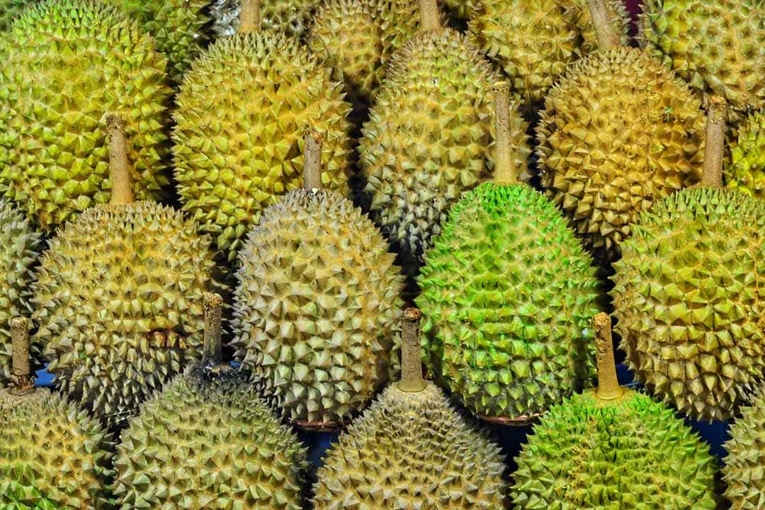 durians close up