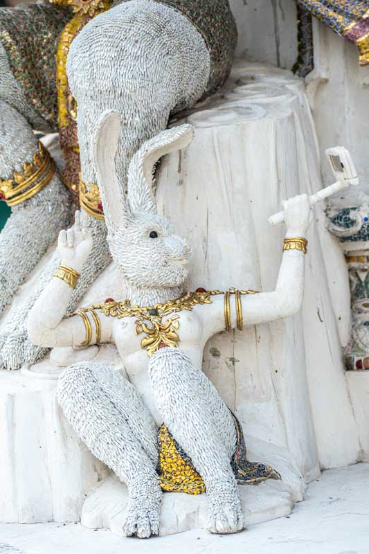 bunny-taking-selfie-in-wat-pariwat-bangkok