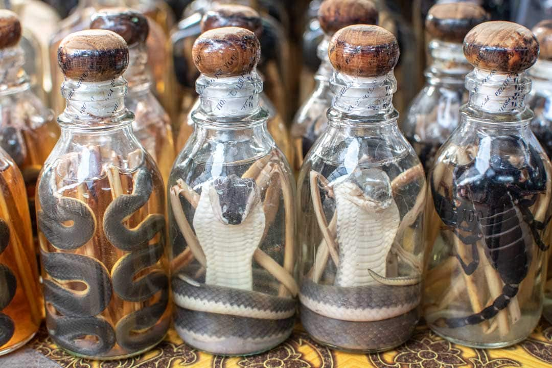 laos-snake-whiskey