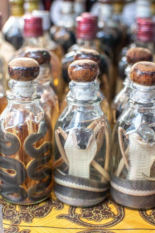 snake-whiskey-in-laos