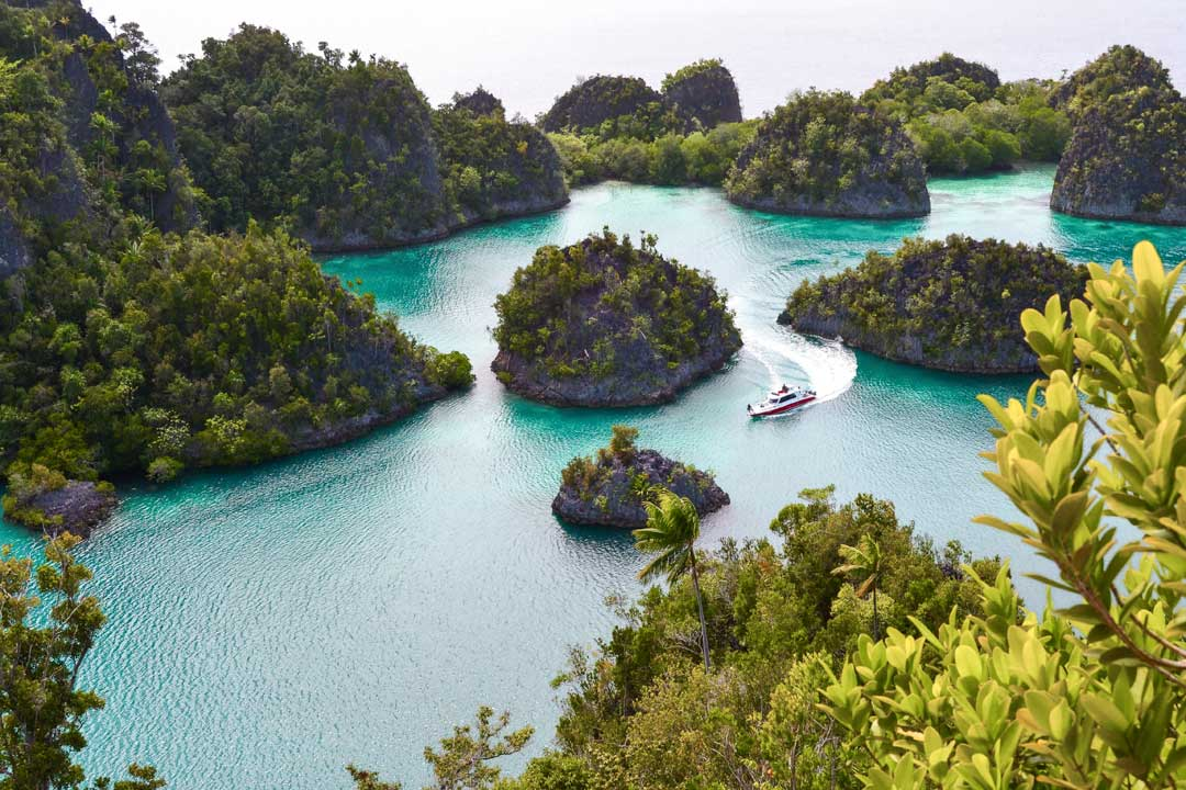 bird-ee view of-raja-ampat islands