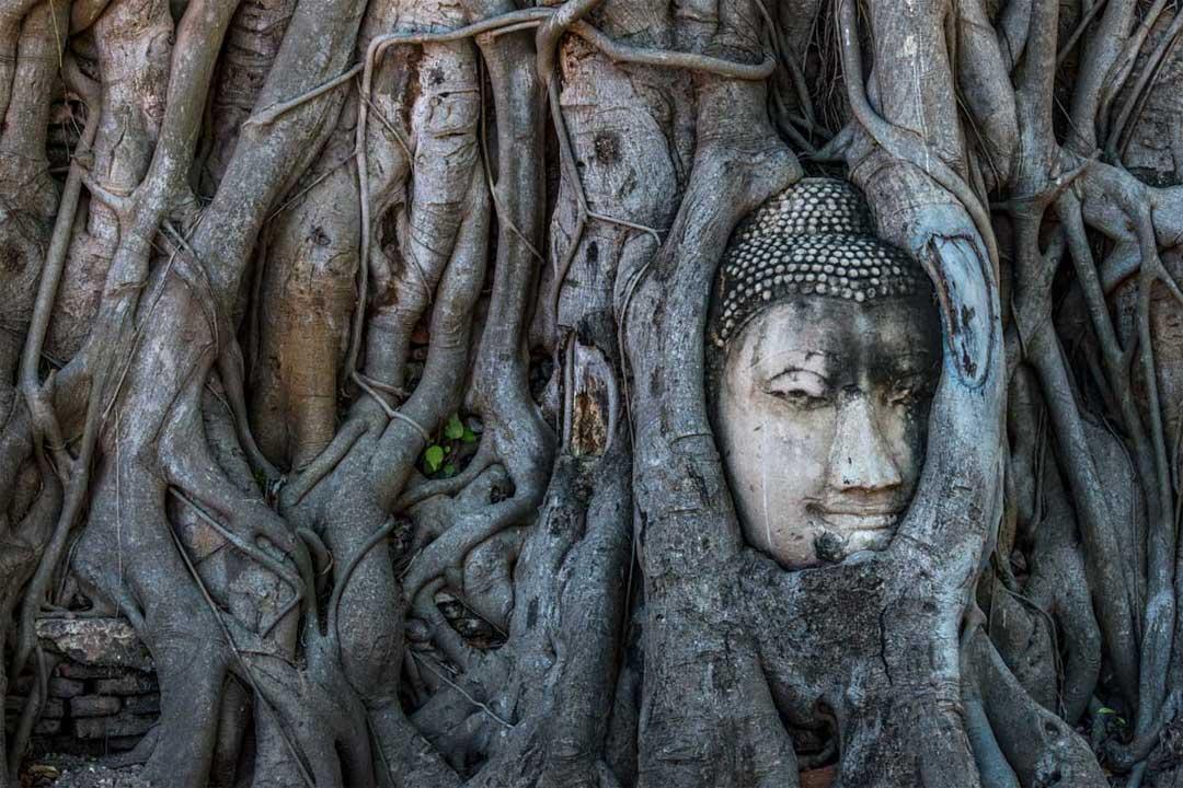 landmarks-in-thailand-ayutthaya