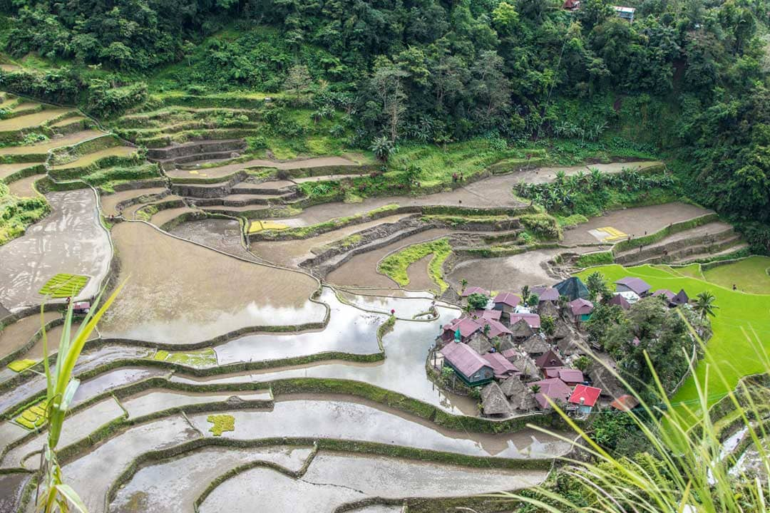 village-in-the-middle-of-rice-terraces-in-banaue