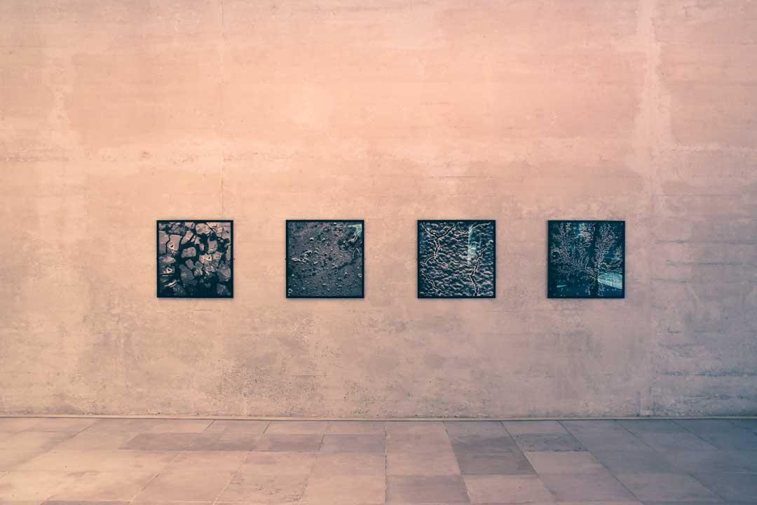 biennale-exposition