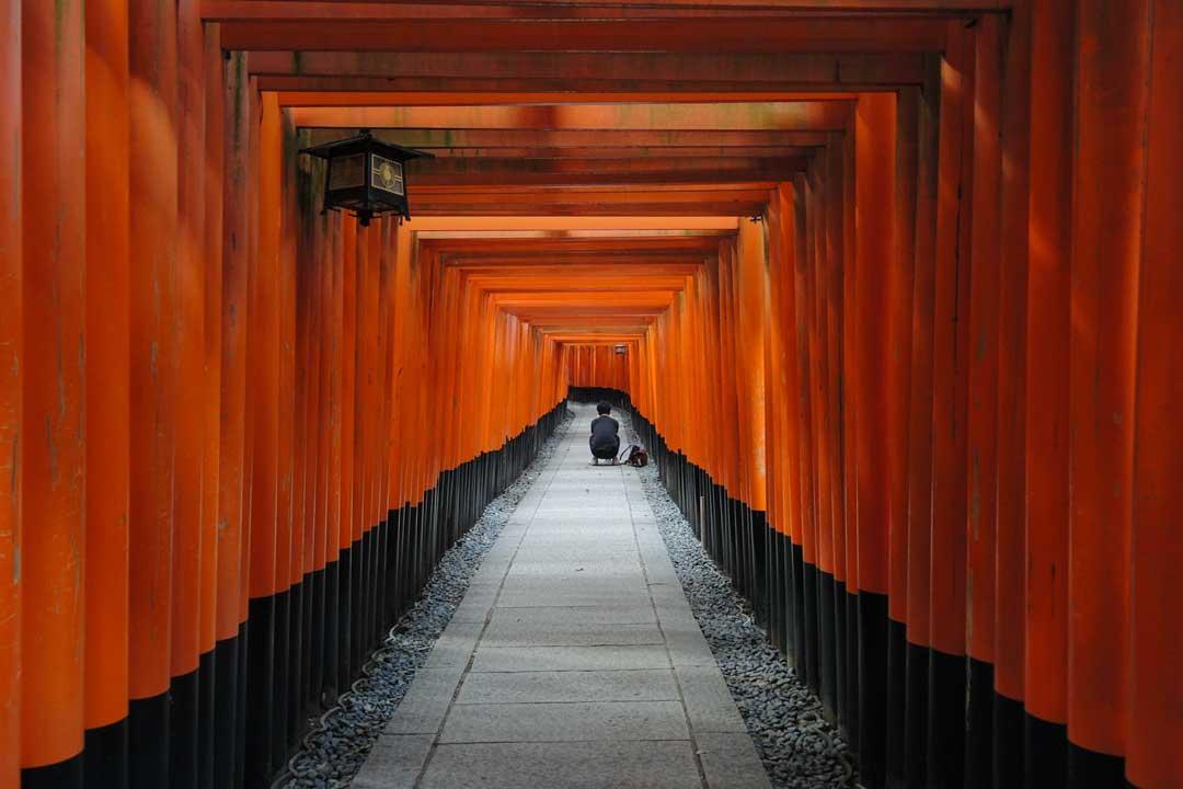 photographer-in-a-japanese-shrine