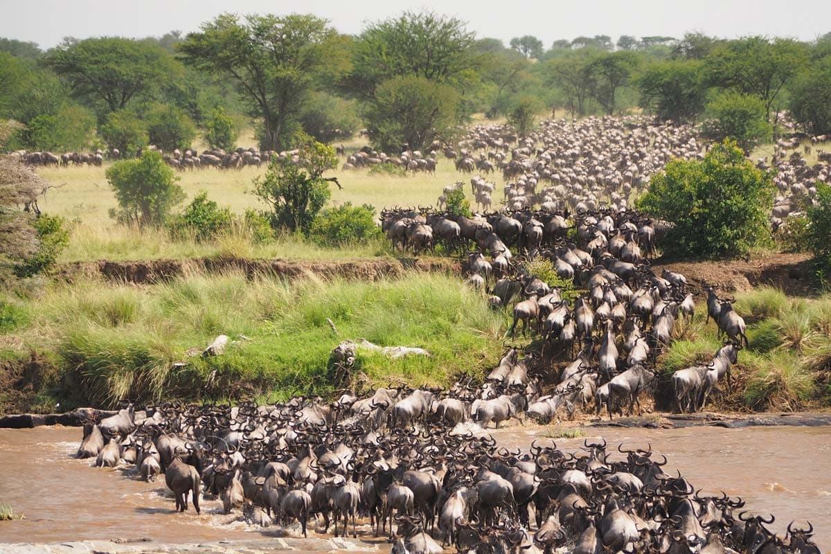 african-landmarks-great-migration