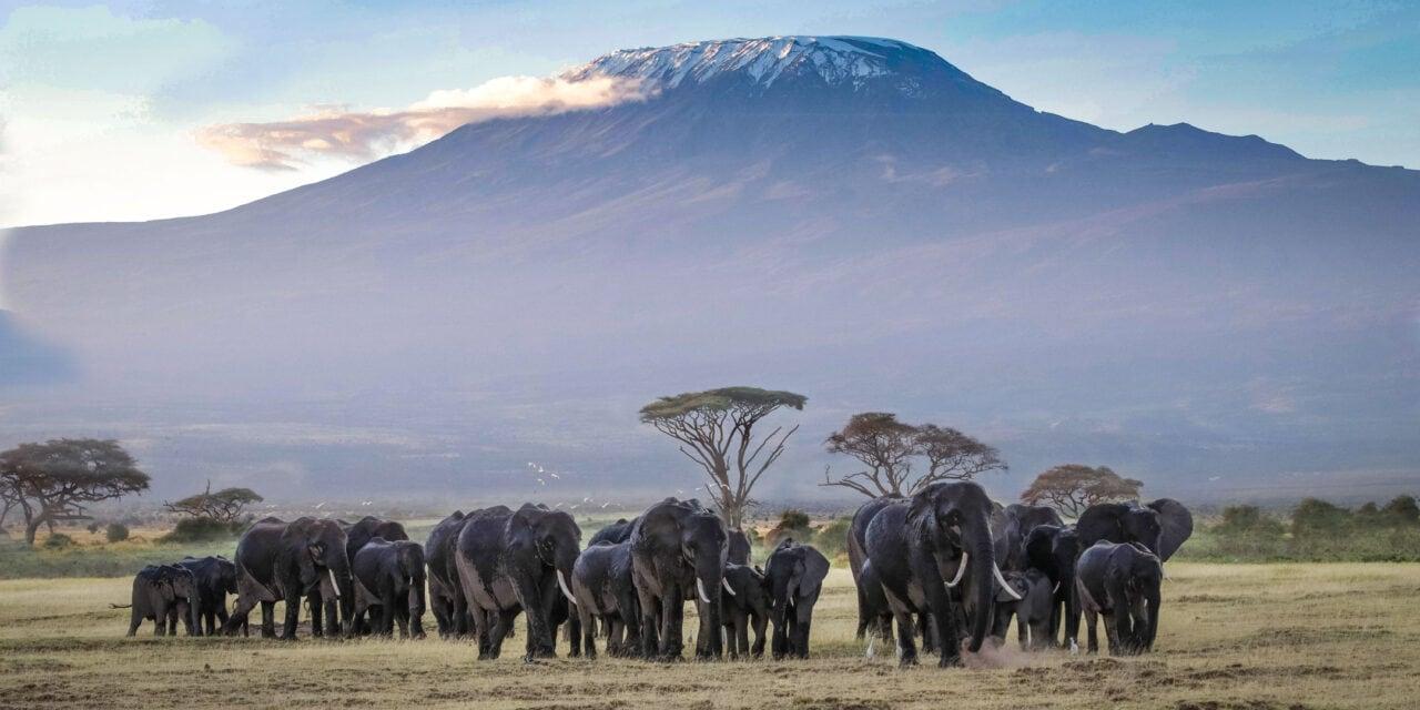 Top 20 Biggest Landmarks in Africa