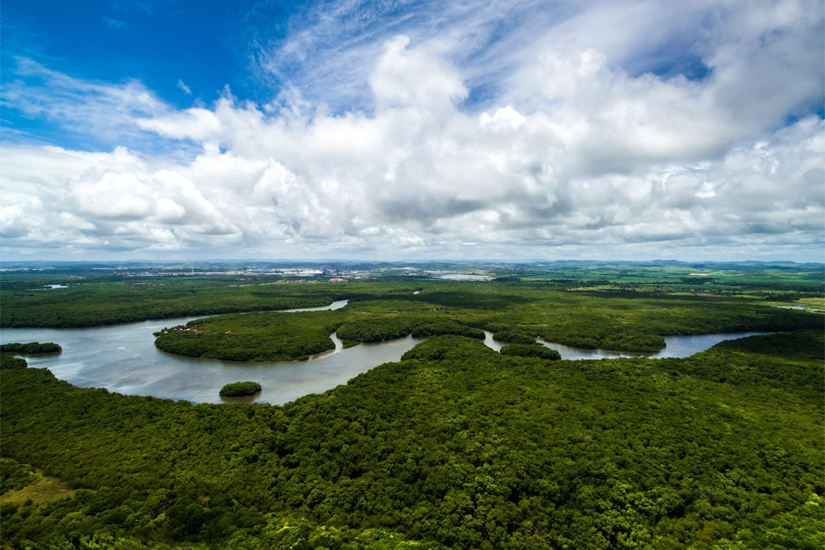 south-american-landmarks-amazon-rainforest