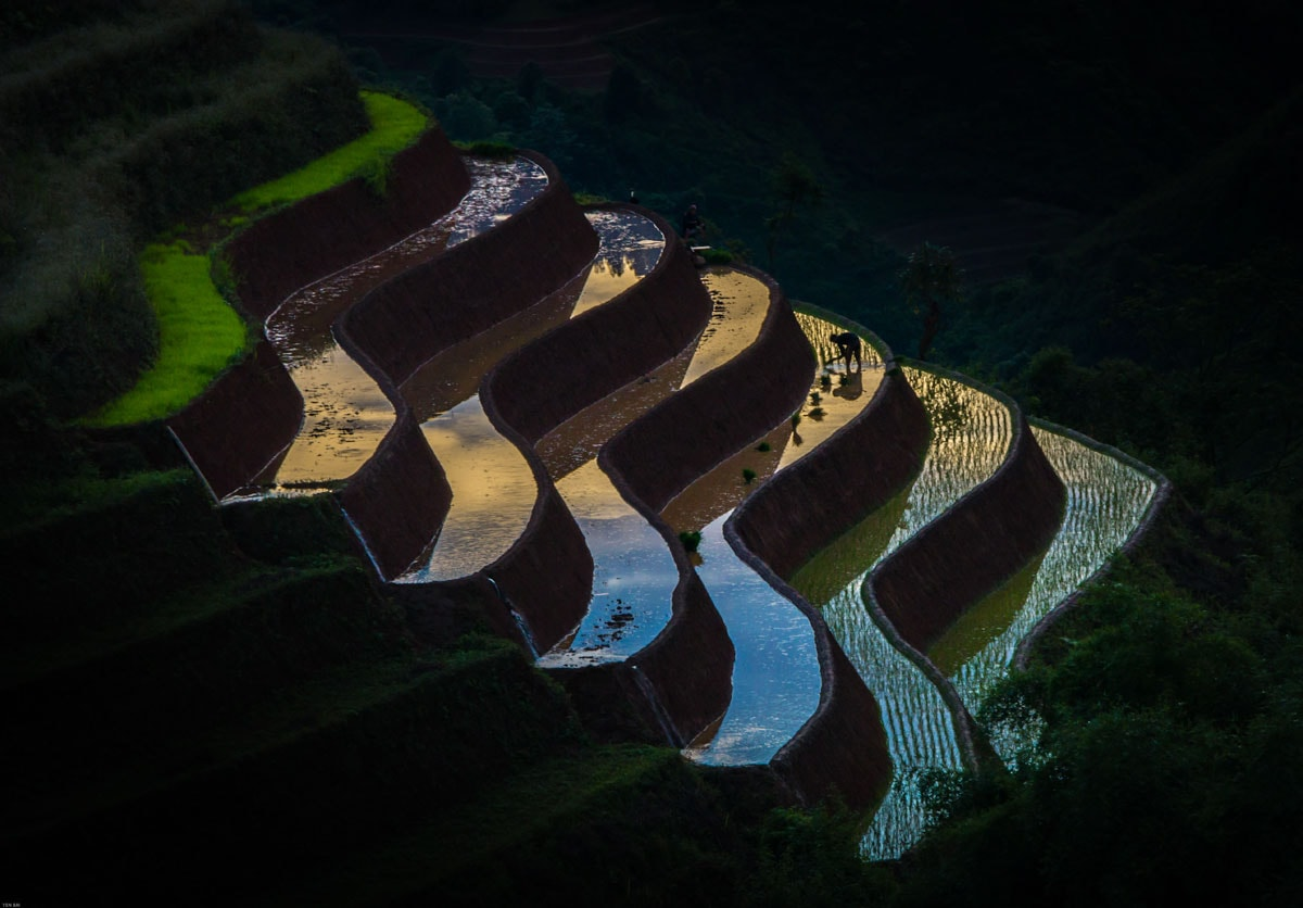 man-working-on-rice-terraces-at-dawn