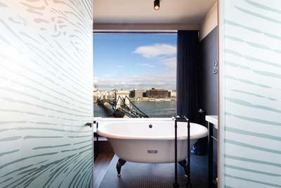 bathtube with a bridge view