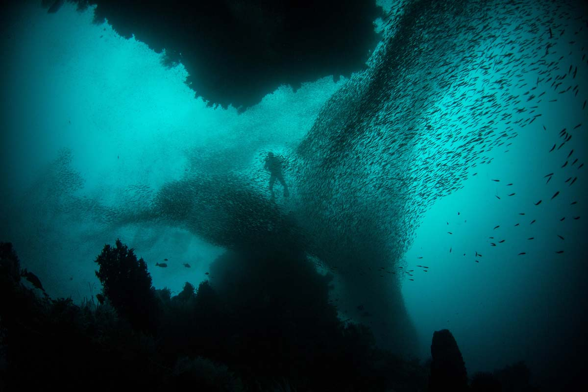 what-is-indonesia-famous-for-diver-surrounded-by-thousands-fish