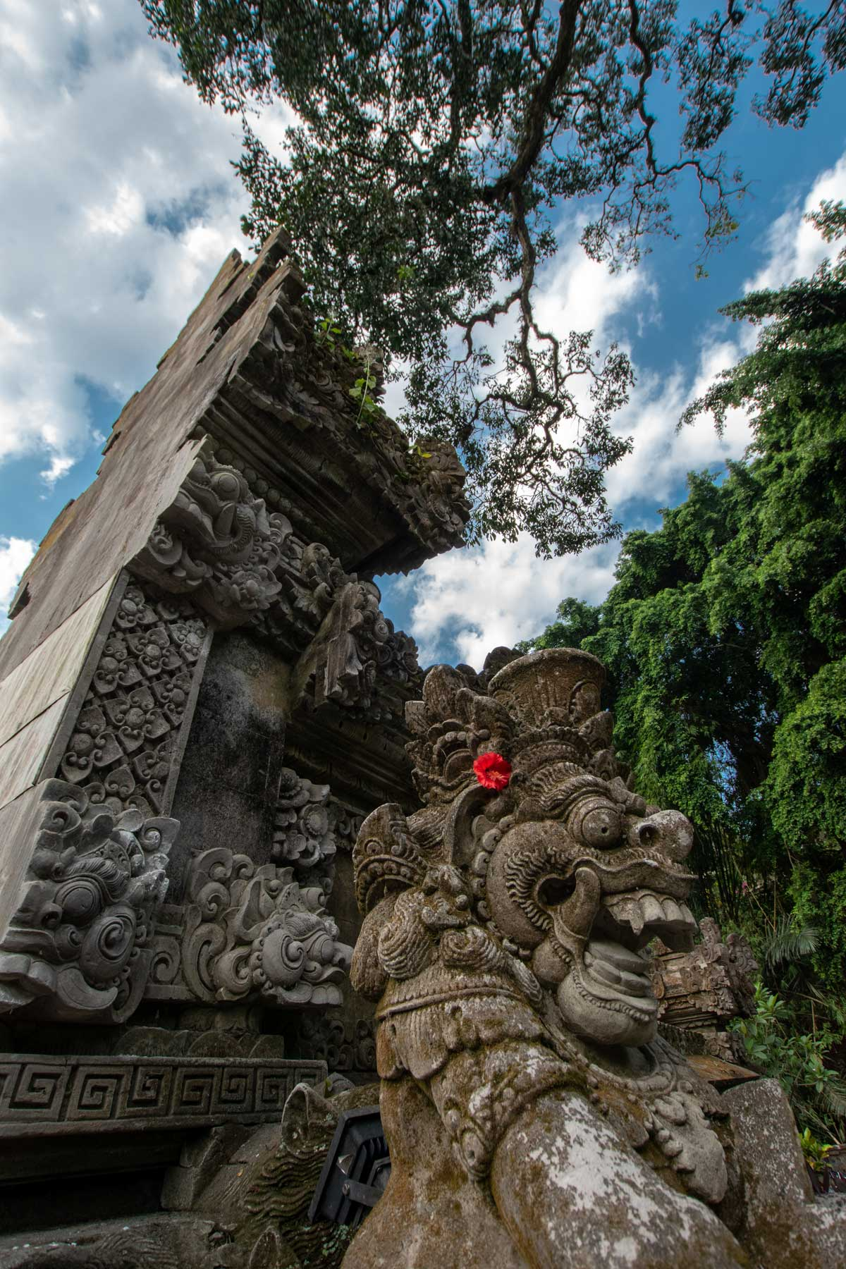 bali-photos---lion-head