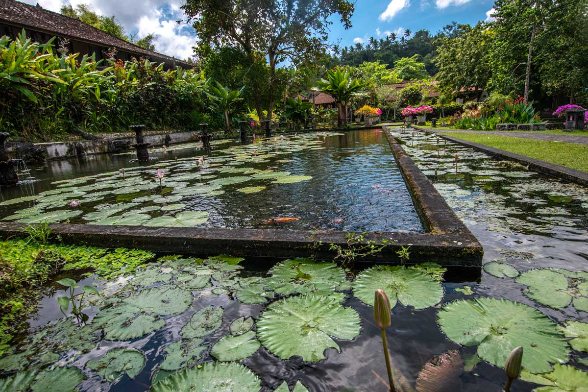 bali-photos---tirta-gangga-pool