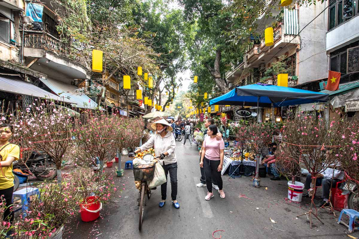 Hanoi facts - Lunar new year preparations