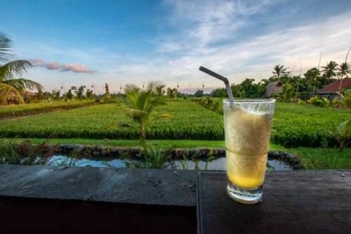 bali-photos---ubud-drink
