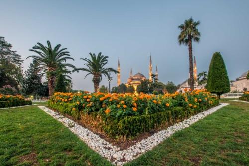blue-mosque-park