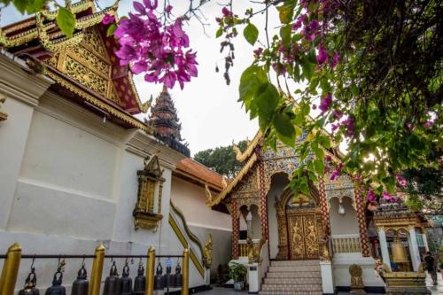 chiang-mai-garden